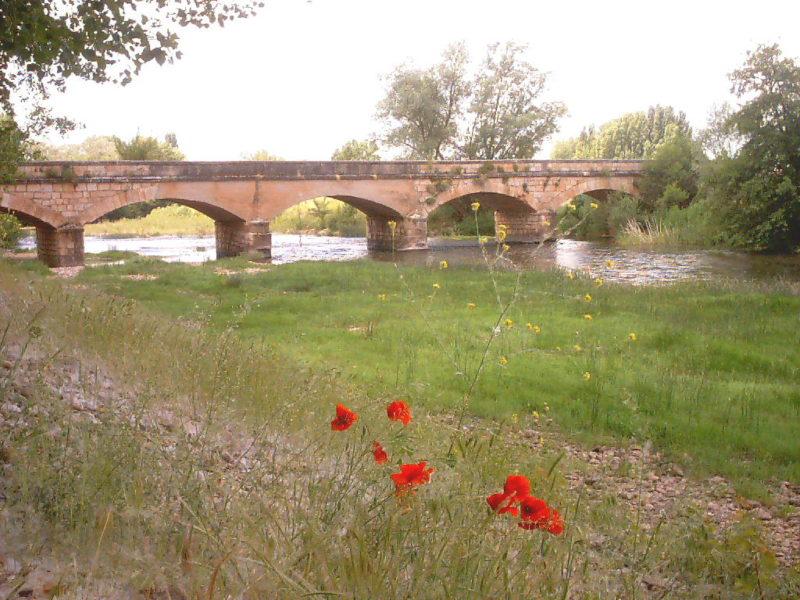 Puente sobre el río Arlanza