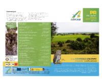 Sendero de las grandes encinas en en Solarana – Castrillo Solarana
